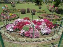 Naturaleza, parque, Jammu y Cachemira, la India Foto de archivo