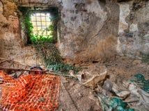 Naturaleza que reclama el sótano viejo, construyendo Foto de archivo libre de regalías