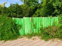 Naturaleza que vuelve a tomar la cerca artificial Fotografía de archivo libre de regalías