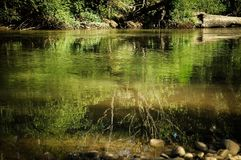 Naturaleza, río y reflexión Imagen de archivo libre de regalías