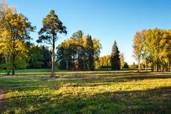 Naturaleza rusa Foto de archivo libre de regalías