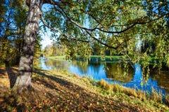 Naturaleza rusa en otoño Imagen de archivo libre de regalías