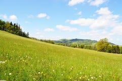 Naturaleza salvaje salvaje de la monta?a el la primavera fotos de archivo