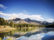 Naturaleza salvaje en montañas rocosas