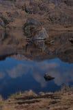 Naturaleza salvaje nacional Foto de archivo libre de regalías