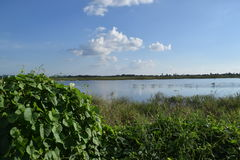 Naturaleza y cielo Foto de archivo libre de regalías