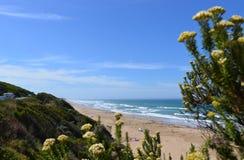 Naturaleza y playa de Melbourne Foto de archivo