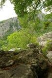 Naturaleza y rocas Fotografía de archivo