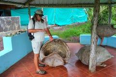 Naturalista che parla della carapace gigante di Galapagos alla s Fotografie Stock
