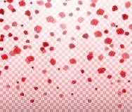 Naturalistic colorful falling rose petals on transparent background. Vector Illustration. EPS10 Stock Image