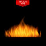 Naturalistic Fire on Dark  Background. Vector Illustration Stock Images
