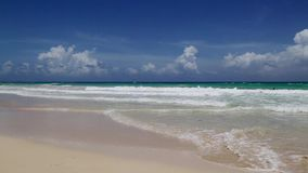 Naturally beautiful beach with waves. In the Dominican Republic stock footage
