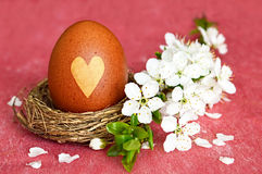 Naturally colored Easter egg in nest Stock Photo