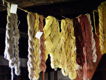Naturally Died Wool Yarn Hanging. Naturally colored and died wool yarn hanging to dry at Old World Wisconsin Stock Photo