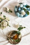 Naturally dyed Easter blue eggs, and tea cup. Urrounded by white flowers on the table with white tablecloth stock images