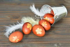 Naturally dyed Easter eggs. Easter eggs colored with onion. Peel royalty free stock photos