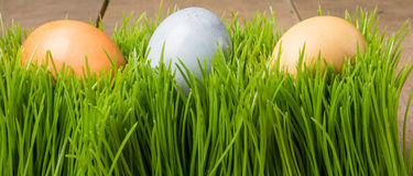 Naturally dyed Easter eggs for holiday Stock Photo