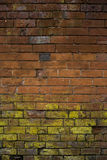 Naturally patterned brick wall. Royalty Free Stock Photography