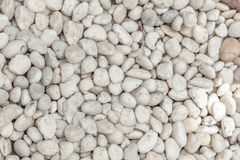 Naturally polished white rock pebbles Royalty Free Stock Photography