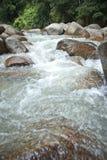 Naturally undeveloped river in Bentong, Pahang, Malaysia Royalty Free Stock Photography