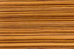 Naturalna afrykanina Zingana zebrano drewna tekstura Zdjęcia Stock
