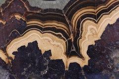 naturalna agat tekstura Fotografia Stock