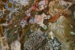 naturalna agat tekstura Obraz Stock