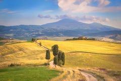 Naturalna biała nieociosana droga w Tuscany, Włochy Zdjęcia Royalty Free
