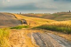 Naturalna biała nieociosana droga w Tuscany, Włochy Obraz Royalty Free