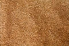 Naturalna brown skóra textured deseniowy tło makro- widok fotografia Zdjęcia Stock