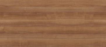 Naturalna drewniana tekstura dla wnętrza fotografia royalty free