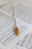 Naturalna dyrygent batuta na orkiestralnym wyniku zdjęcie stock