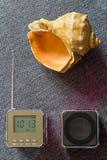Naturalna fala Przenośny radiowy odbiorca, odtwarzacz mp3 i Seashell, Zdjęcie Royalty Free