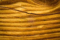 Naturalna maceracji tekstura fotografia royalty free