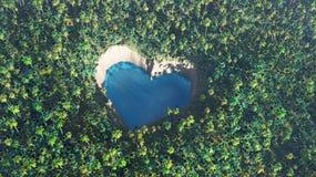 Naturalna miłość Zdjęcia Royalty Free