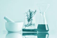 Naturalna organicznie botanika i naukowy glassware, Alternatywna zielarska medycyna, Naturalni skóry opieki piękna produkty Zdjęcie Stock