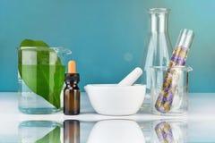 Naturalna organicznie botanika i naukowy glassware, Alternatywna zielarska medycyna z moździerzem, Naturalni skóry opieki piękna  Obraz Stock