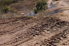Naturalna piaska kamienia tekstura Zdjęcia Stock