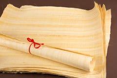 Naturalna pusta papirusowa tekstura Obrazy Stock
