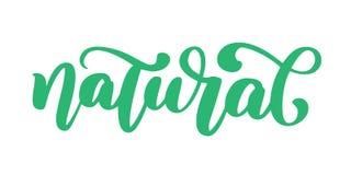 Naturalna ręka rysujący ikony calligpaphy odizolowywał wektorową ilustrację Zdrowej diety i stylu życia weganinu symbolu jedzenie Obraz Royalty Free