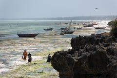 Naturalna rafa koralowa w Zanzibar Zdjęcia Royalty Free
