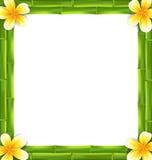 Naturalna rama Zrobił bambusa i Frangipani kwiaty, kopii przestrzeń dla Twój teksta Zdjęcia Royalty Free