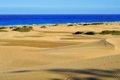 Naturalna rezerwa diuny Maspalomas, w Granie Canaria, Hiszpania obraz stock