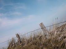 Naturalna rezerwy Spiekeroog Niemcy Fryzyjska wyspa zdjęcia stock
