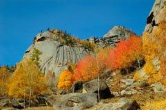 Naturalna sceneria Obrazy Stock