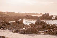 Naturalna sepiowa scena ocean indyjski przy Pringle zatoką Obraz Royalty Free