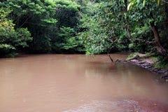 Naturalna siklawa Która jest piękna fotografia stock