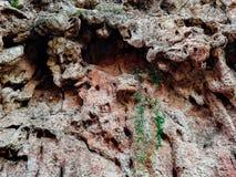 naturalna skała tło zdjęcie stock
