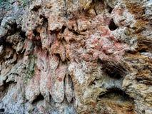 naturalna skała tło fotografia royalty free