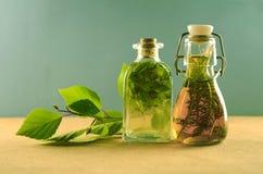 Naturalna ziołowa tinctures medycyna zdjęcia royalty free